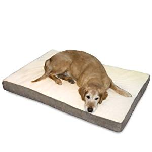 Orthopedic Dog Beds for Your Fur Baby